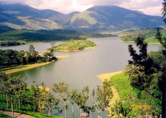 kerala,india,nature,back water
